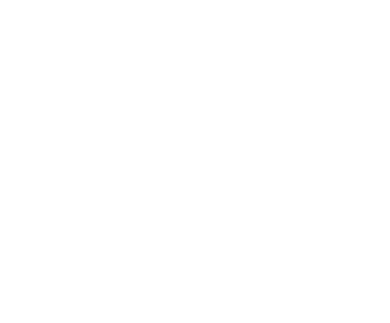 Logo - BCI Consulting white